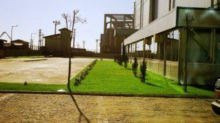 Fabrika Bahçe Düzenlemesi